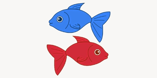 rfbfish